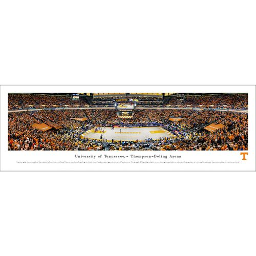 Tennessee Volunteers Basketball Panorama